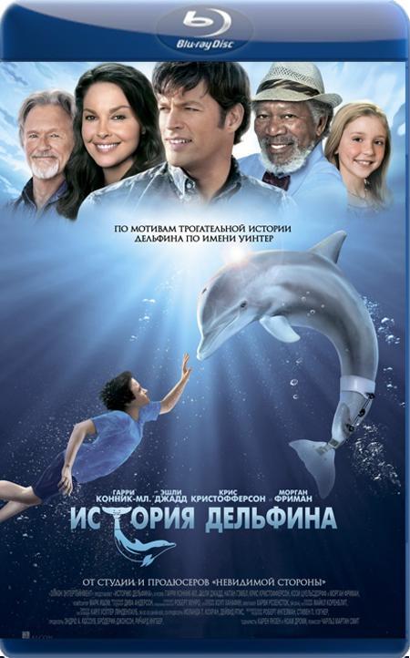 История дельфина / Dolphin Tale (2011) BDRip