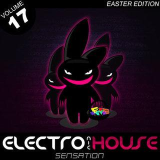 Electronic House Sensation Vol. 17 (Easter Edition) 2008