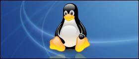 Силовики пустили Linux в ПК госсектора