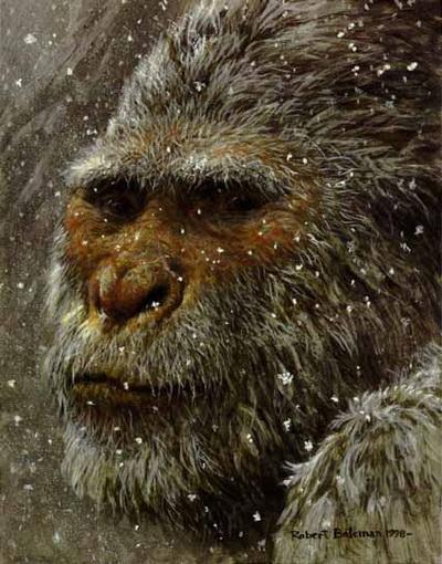 Не снежный: – одичавший