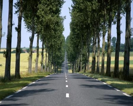 История платных дорог