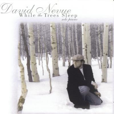 David Nevue - While The Trees Sleep (1995)