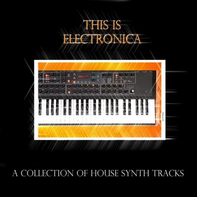 VA - This Is Electronica (A Collection Of House Synth Tracks)(2010)xd;