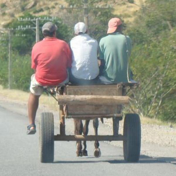 Рейтинг Самых Глупых Автомобильных Законов Мира